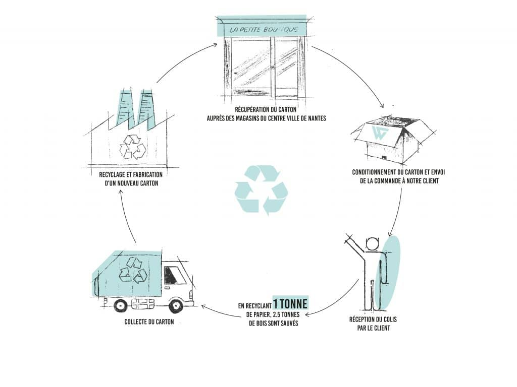 Recyclage du carton Wildsuits